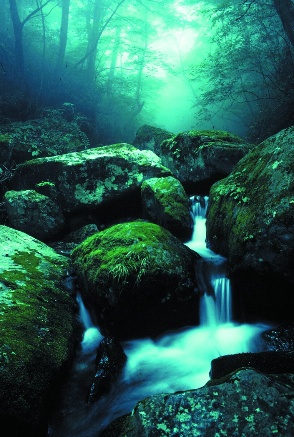 Name: mountain pictures mountain stream wfl1.jpg Size:303.76 kB Resolution:999×1487